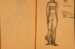 Drawing 48