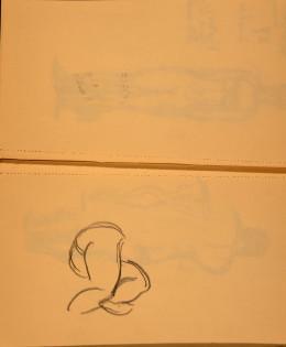Drawing 49